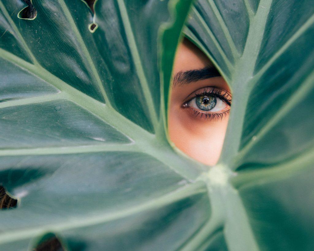 Shopping: maak van je werkplek een creatieve jungle. Zoals dit vrouwenoog achter een groot blad naar je kijkt.