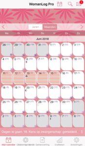 Overzicht kalender