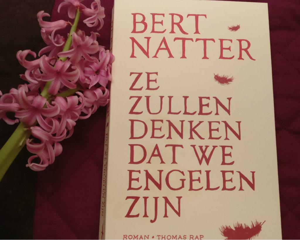 De cover van Ze zullen denken dat we engelen zijn van Bert Natter.