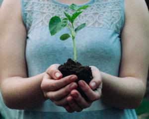 Wat ga jij doen op de Dag van de Duurzaamheid?