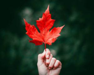 Met deze 5 tips versterk je je weerstand in de herfst- en wintermaanden.